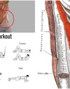 The  shaped cut with right workout abs also valentinbosioc rh