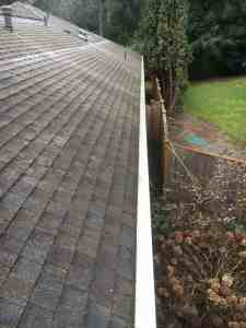 roof maintenance after gutters