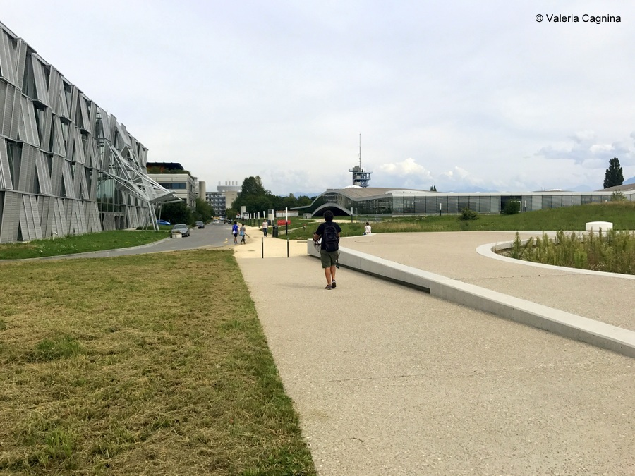 A Losanna come mentor in un summer camp di imprenditoria epfl politecnico