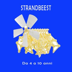 corso strandbeest 4 a 10 anni robotica valeria cagnina alessandria