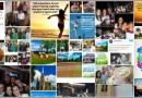 Découvrez vos statistiques sur Instagram et optimisez votre compte grâce a Iconosquare
