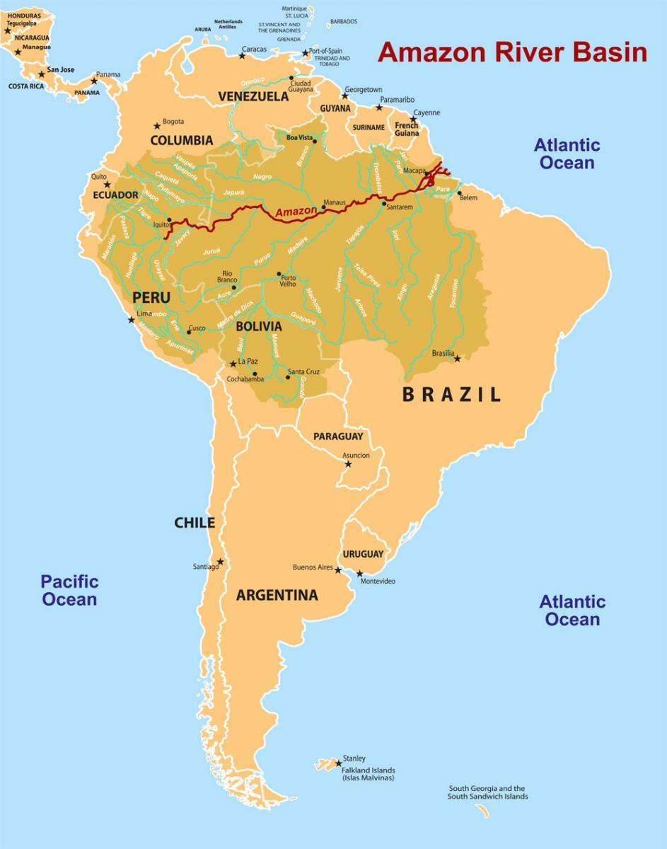 Amazon Rainforest World Map : amazon, rainforest, world, Amazon, Rainforest, Catalog, Online