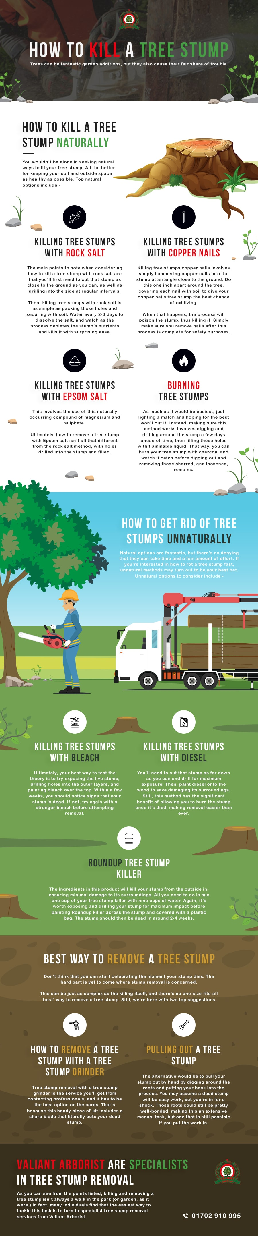 Killing Tree Stumps Copper Nails : killing, stumps, copper, nails, Stump, Naturally, Unnaturally, Valiant, Arborist