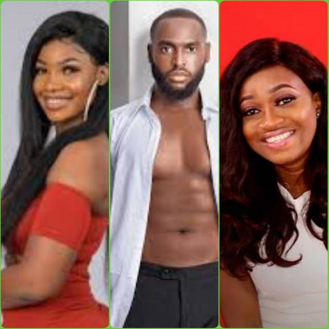 Big Brother Naija 2019: Tacha's love letter to Nelson revealed
