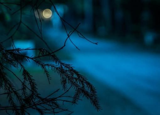 nočné videnie