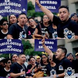 Orgullo y Diversidad 2017