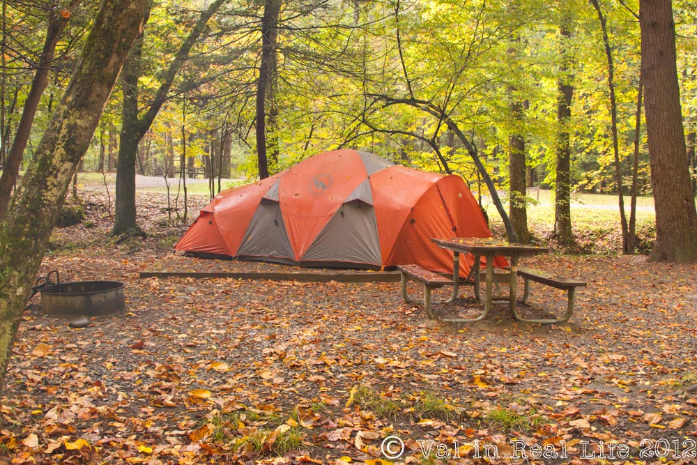 North America's Best Campgrounds: Elkmont