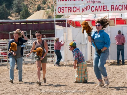 virginia city camel and ostrich races - val in real life