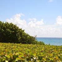 """Ma vie en Floride du Sud #4: Boca Raton """"so chic"""""""