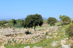 1-Alghero SARD 576