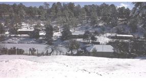 Schnee in Chihuahua