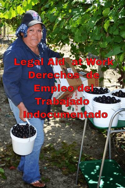 Los Derechos de Empleo del Trabajador Indocumentado Legal Aid at Work