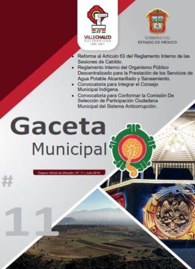 caratulaGaceta11