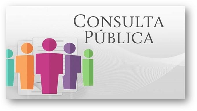 Participación en la Consulta Ciudadana