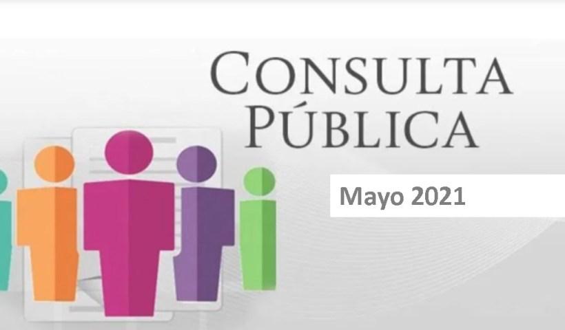 consultaPublica2021