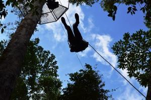 Canopy/ZipLine