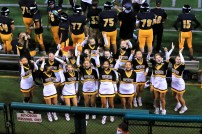 """Viking Cheer says, """"Rock the House!! Rock! Rock the House!!"""""""