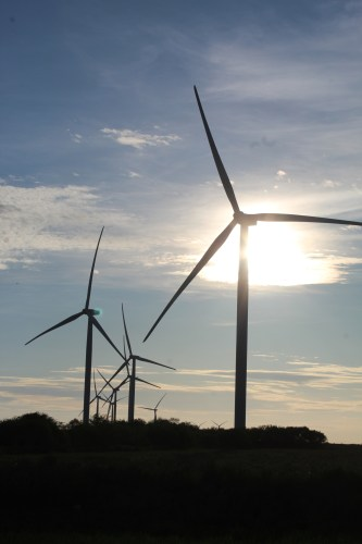 Turbines from a wind farm along FM 1847 north Los Fresnos.