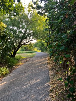 The Arroyo Trail current end will extend from Expressway 77/83 to Dixieland Park.