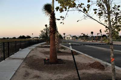 The Villas on Freddy, currently in development in North McAllen, features a walking trail around the gated subdivision and 12 parking areas. (Courtesy)