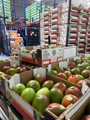 Mangos are plenty among the produce at Robinson Fresh. (Courtesy)