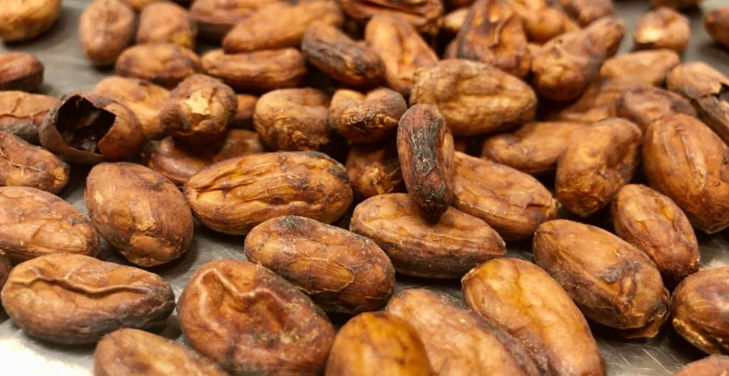 Cacao beans from all over the world are used in the products of Raw Xocolat.