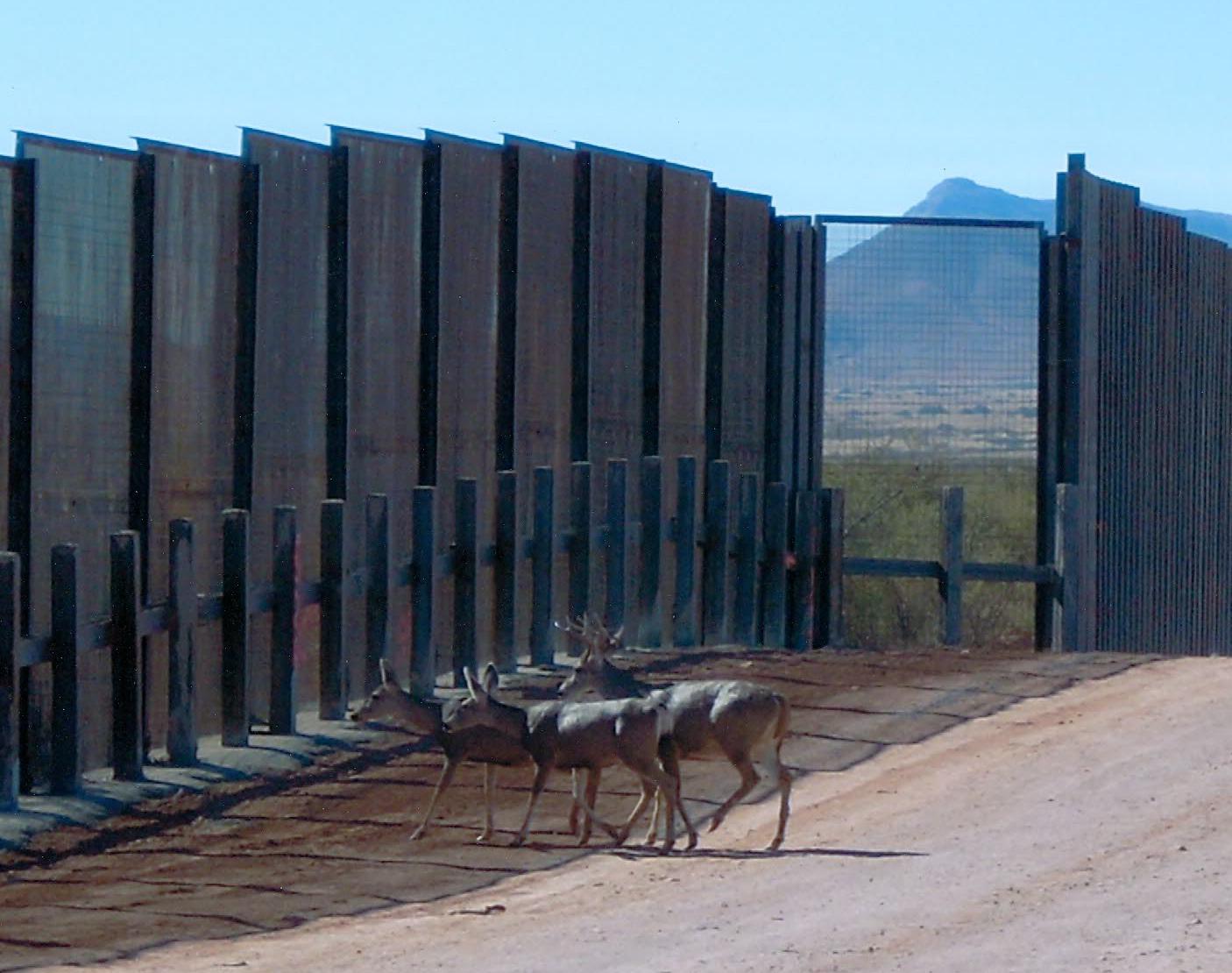 Immigration Reform Legislation Hits the Texas Border Hard