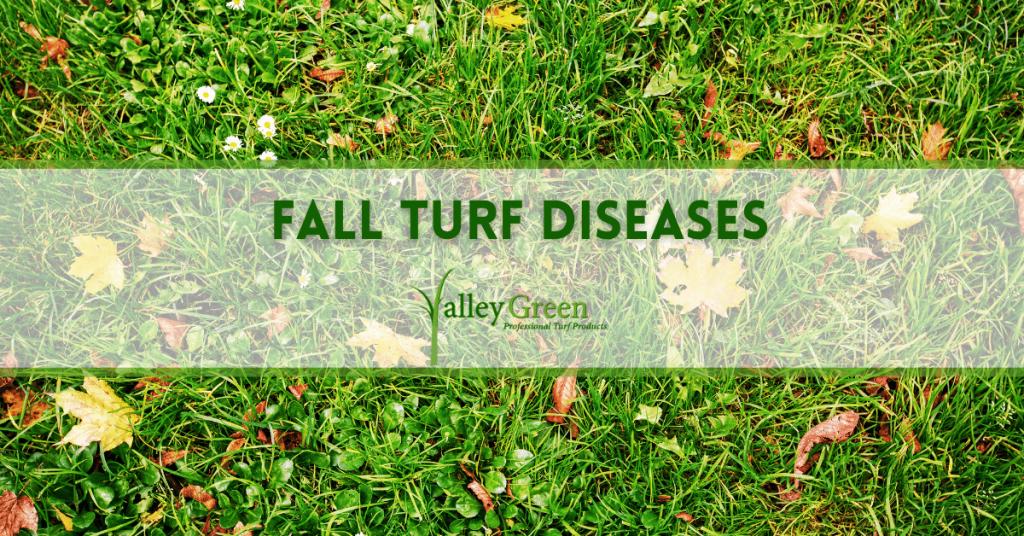 Fall Turf Diseases