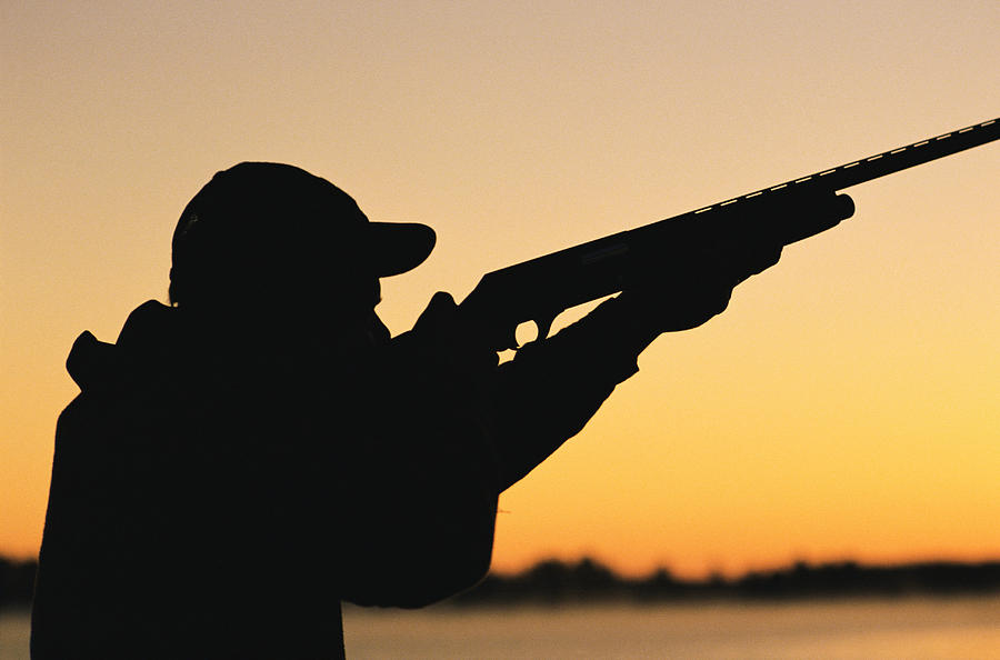 Hunter fined after shooting horse  Valley Heritage