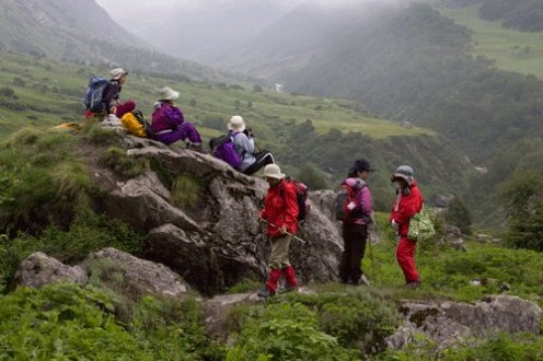 Japanese in the middle of the valley of flowers