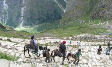 Ghangaria to Hemkund Sahib trek, You can see the whole trek from bottom of the hill. The left side gorge is the gateway to Valley of flowers.
