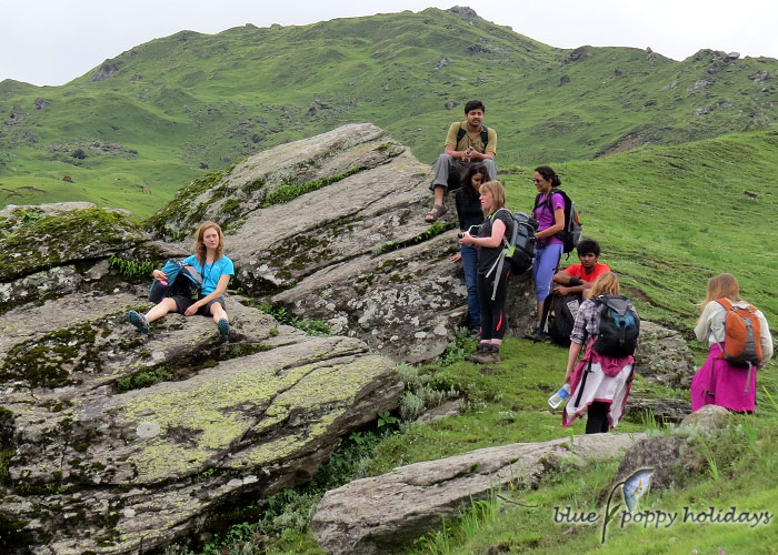 Auli And Gorson Top trek