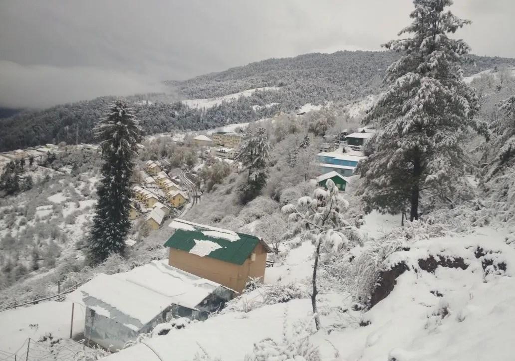 Blue Poppy Resorts, Auli in winters