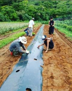 Valley of the Latte Adventure Park Guam Adventures, Tours, and Farm