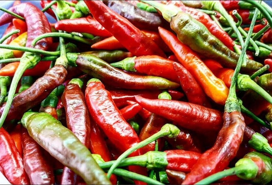 delicious peppers from your sustainable farms at the Valley of the Latte Adventure Park