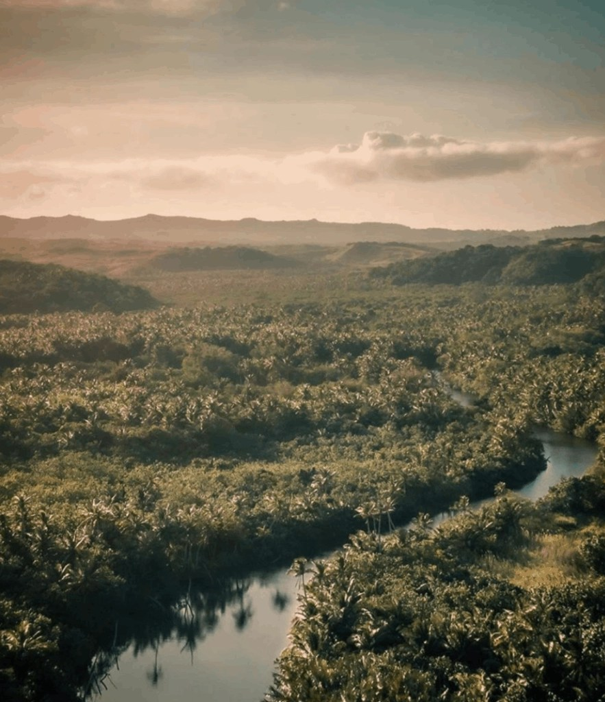 Valley of the Latte, Guam's Best Tour Over view of the river valley