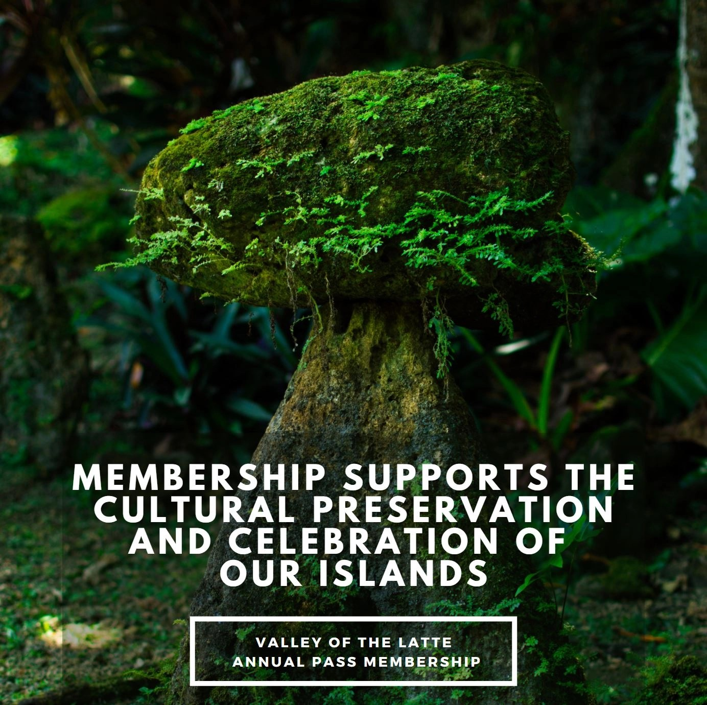 Support the cultures of Micronesia with a Valley of the Latte Annual Pass Membership