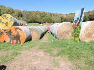 Painted Hay bales in the hay bale maze