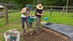 More little garden helpers!