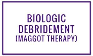 Biologic Debridement (Maggot Therapy) - Wound Treatments at Valley Wound Care Specialists
