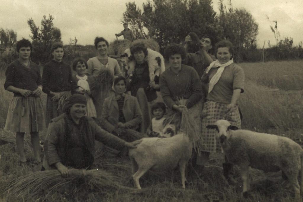 2020-03-07 – Grupo de mulleres nun campo de Prado en 1950. Identificadas Rosita González, Pura Giráldez, Salustiano e Fina Álvarez.