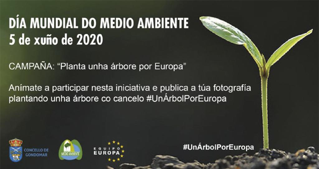 2020-06-04 – DIA MEDIO AMBIENTE 2020B