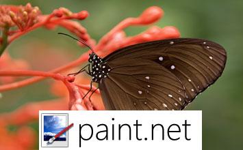 paint.net kuvankäsittelyohjelma
