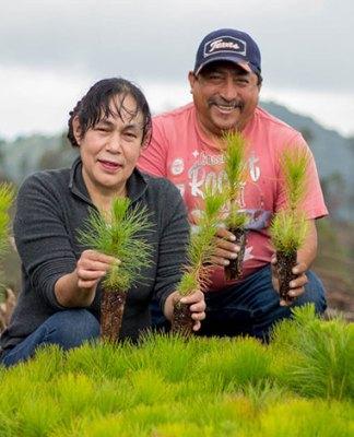 Fondo Verde para el Clima y BID: 'Ejido Verde'