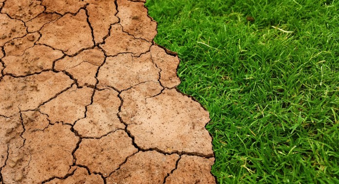 Más de la mitad de la población mundial reconoce que el cambio climático es una emergencia