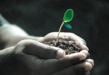 Más de 330 empresas han reducido en 25% las emisiones a nivel mundial, desde el Acuerdo de París