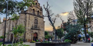 Gobierno de Jalisco y Pacto Mundial firman convenio para impulsar el desarrollo sostenible