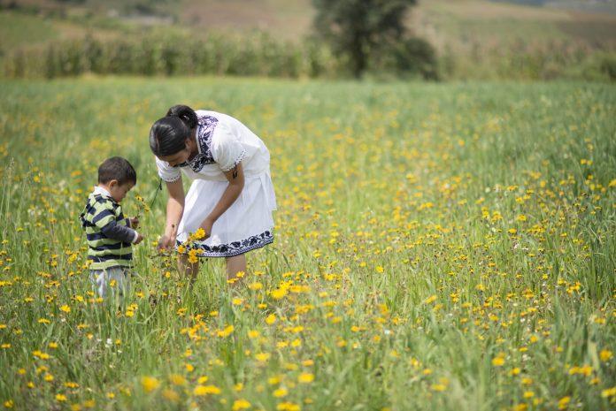 Saber Nutrir de Grupo Herdez mejora la calidad de vida de familias en vulnerabilidad alimentaria