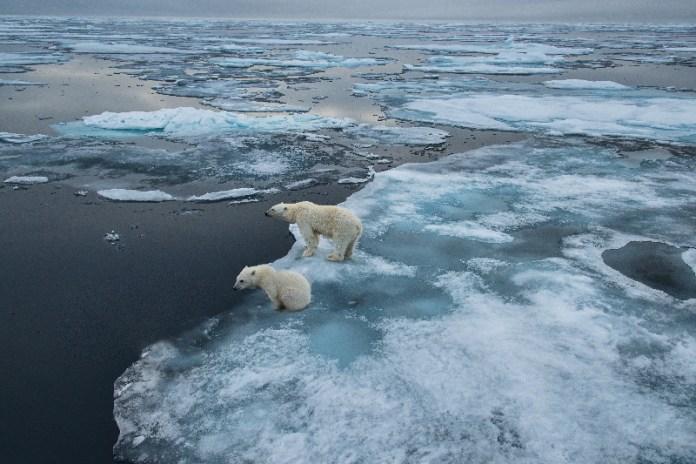 Grupo AXA avanza en su lucha contra el cambio climático