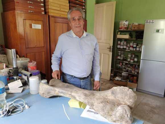 Fémur de mastodonte fosilizado, hallado en Sacaba, Cochabamba.